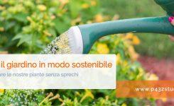 Irrigare il giardino in modo sostenibile